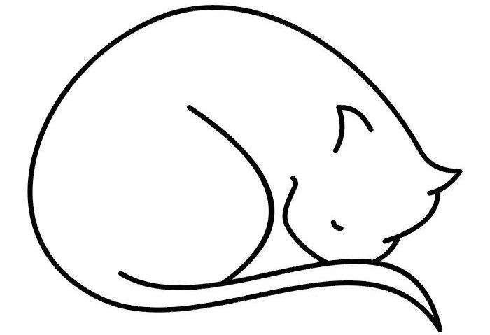 Kočky / šelmy