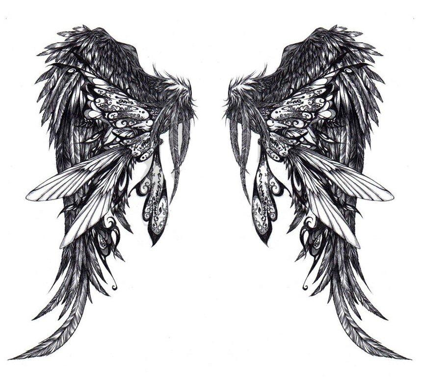 790 px křídla 1500 px křídla 1217 px