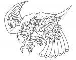 Pták Orel