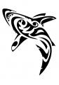 motivy tetování Delfín / Žralok