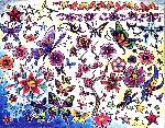Motýl Kytky