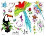 Ptácí