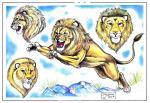 Lev není tygr..