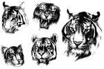 Tygr Realistický
